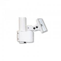 Brat standard monitor camera intraorala TPC